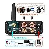 Douk Audio G5 100W Bluetooth 5.0 2 Channel