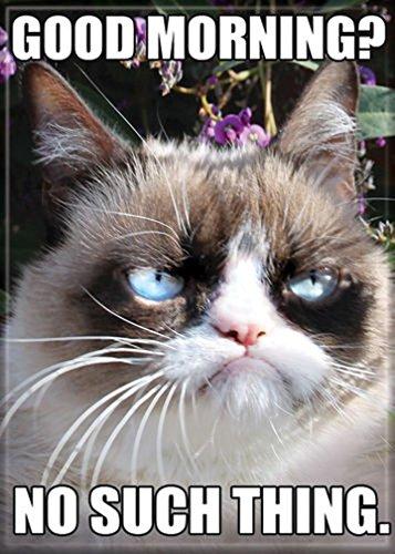 (Ata-Boy Grumpy Cat 'Good Morning' 2.5