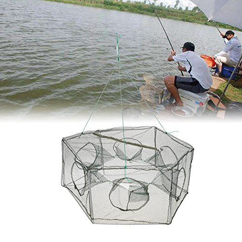 Lixada Collapsible Mesh Fishing Cage,Hexagon 6 Hole Shrimp Cage Trap for for Keeping Minnow Crab Baits Fishing Net
