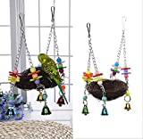 QTMY Natural Rattan Nest Bird Swing Toy with Bells for Parrot Budgie Parakeet Cockatiel Conure Lovebird Finch Cockatoo African Grey Cage Perch Stand