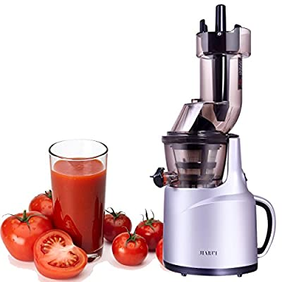 Masticating Juicer, Slow Juicer for Home Appliance, 240W Quiet Motor, XL Tube