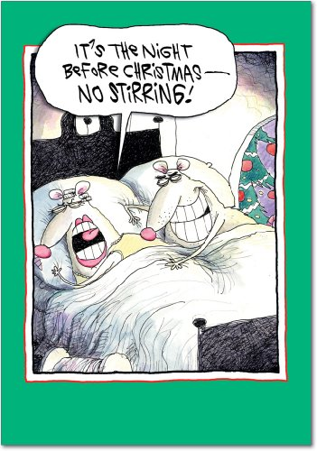 (12 'No Stirring' Boxed Christmas Cards with Envelopes 4.63 x 6.75 inch, Funny Rats Holiday Notes, Silly Mice Christmas Cards, Sexual Innuendo, Dirty Jokes, Inappropriate Christmas Stationery B5821)