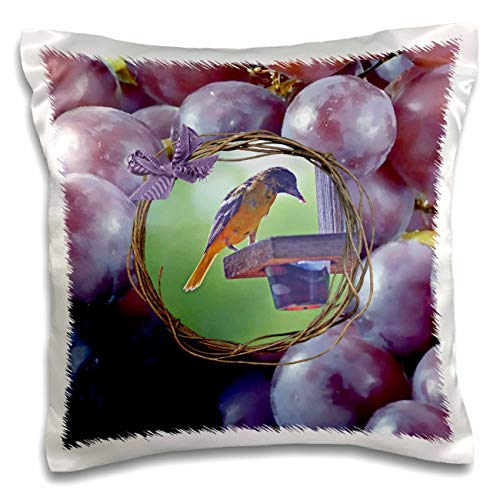 3dRose Beverly Turner Bird Photography - Baltimore Oriole at Feeder, Twig and Grape Frame with Bow, Purple - 16x16 inch Pillow Case (pc_299603_1)