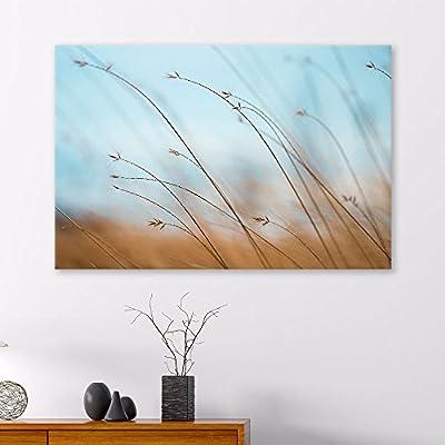 Elegant Piece, Made to Last, Landscape with Wild Grass