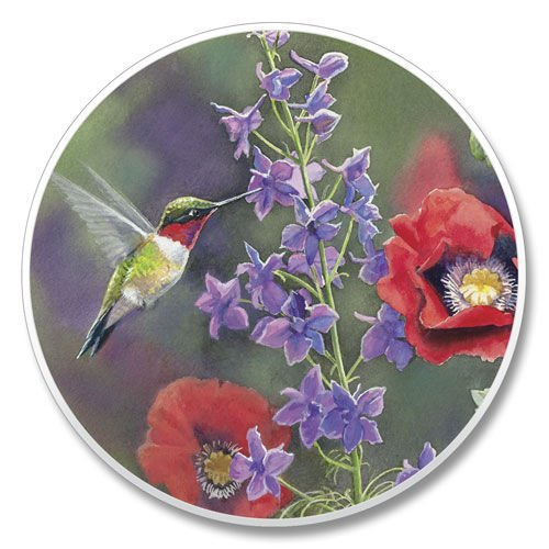 Hummingbird Coaster - Absorbastone Absorbant Car Auto Cup Holder Coaster Hummingbird & Floral