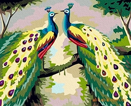Peacock Paint by Number Kit - Wooden Framed