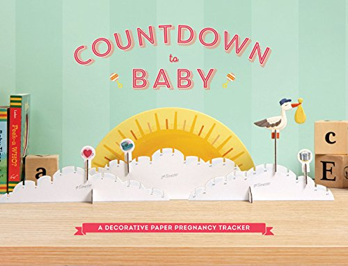 Download Countdown to Baby: A Decorative Paper Pregnancy Tracker ebook