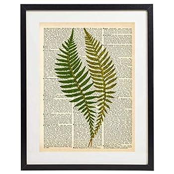 IDIOPIX Fern Art Prints Vintage Botanical Wall Art Set of 4 Prints UNFRAMED 08