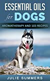 Essential Oils for Dogs: Aromatherapy for beginners