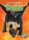 Bats, Kari Schuetz, 1600147208