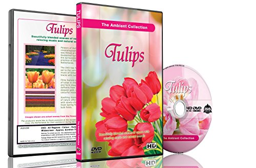 Flowers and Tulips DVD - Flowers of Holland - Blooming Flower Garden Videos for Relaxation (Netherlands Florist)