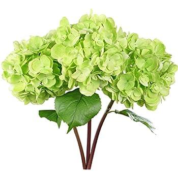 Amazon 22 silk hydrangea flower spray green case of 6 home rinlong artificial hydrangea silk flowers with long stems green fake hydrangea flowers for home wedding decor mightylinksfo Choice Image