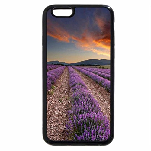 iPhone 6S / iPhone 6 Case (Black) Lavender Field at Dawn, Vaucluse Provence, France