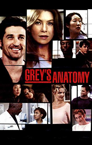 Grey's Anatomy Group TV Poster Print