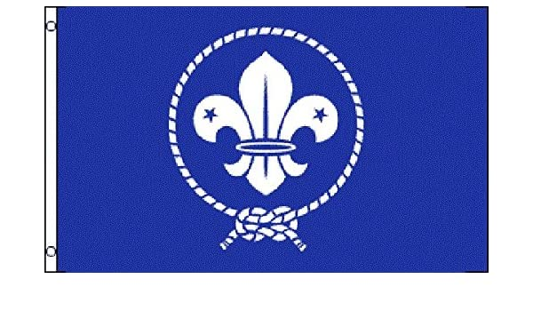 Amazon com : Boy Scouts Of America World Scout Flag 3' X 5