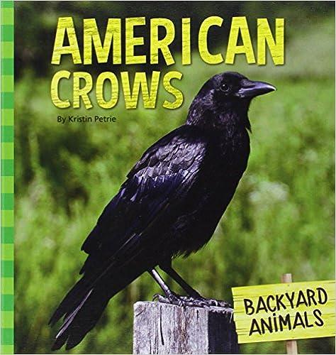 American Crows (Backyard Animals)
