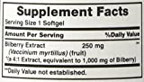 Vitamin World Bilberry Fruit 1000mg, Concentrated Extract, 90 Softgels