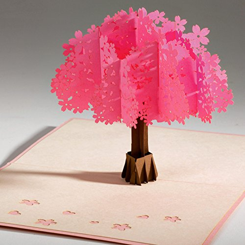 Unique & Beautiful 3D love pop up greeting card & Envelope from PopKard. Surprise with cherry blossom to celebrate Anniversary, Birthday, New Year, Mother's Day, Father's day & Friendship Celebrate Birthday Express