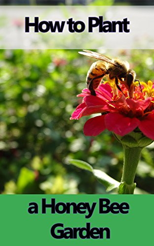 How to Plant a Honey Bee Garden
