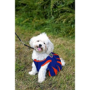 Pets First Collegiate Florida Gators Dog Cheerleader Dress, X-Small
