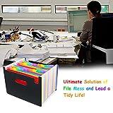 DiGiCare Expanding File Folder File Organizer, 24