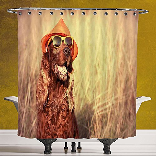 Cool Shower Curtain 3.0 by SCOCICI [ Animal Decor,Funny Retro Irish Setter Dog Wearing Hat and Sunglasses Humor Joy Picture,Redbrown Tan ] Polyester Fabric Bathroom Shower - Fallout 4 Sunglasses