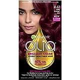 Garnier Olia Hair Color, 4.62 Dark Garnet Red, Ammonia Free Red Hair Dye (Packaging May Vary)