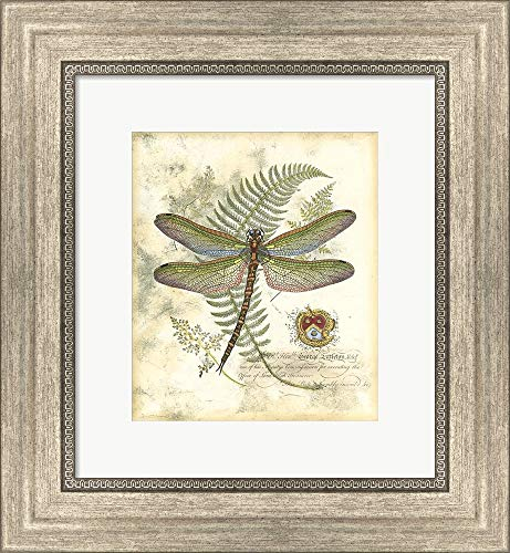 Mini Regal Dragonfly I Framed Art Print Wall Picture, Silver Scoop Frame, 12 x 13 inches