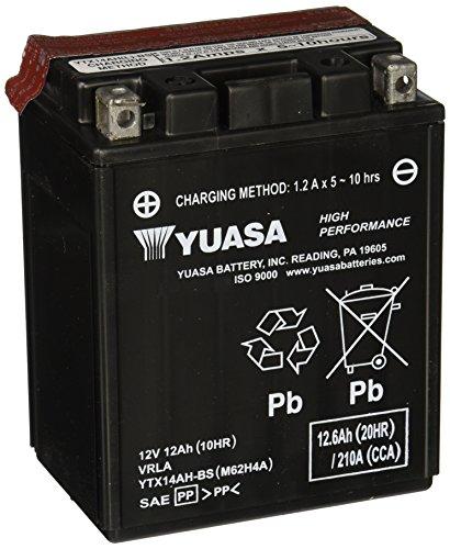 (Yuasa YUAM62H4A YTX14AH-BS Battery)
