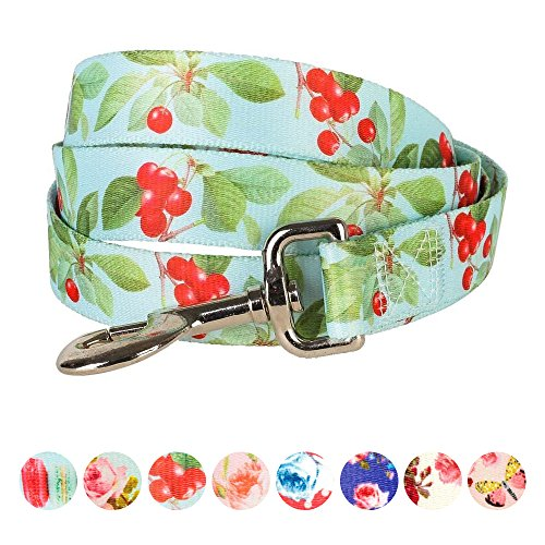 "Blueberry Pet Durable The Cherry Garden Turquoise Designer Dog Leash 5 ft x 3/4"", Medium, Leashes for Dogs"