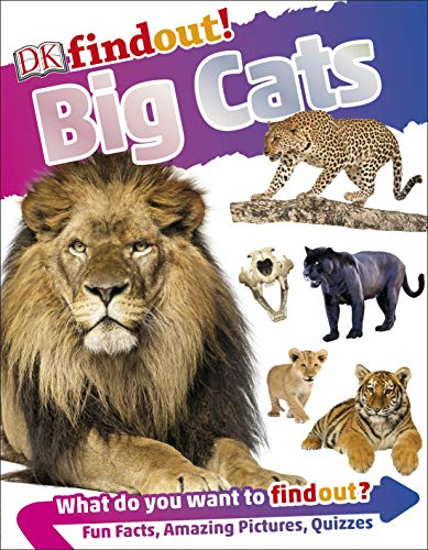 DK findout! Big Cats (DKfindout!) (English Edition)