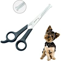 Dog Grooming Scissors