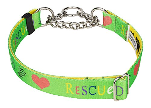 Country Brook Design Rescued with Love Half Check Dog Collar - Large