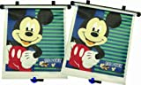 The First Years Disney Baby Mickey Mouse Window - Best Reviews Guide