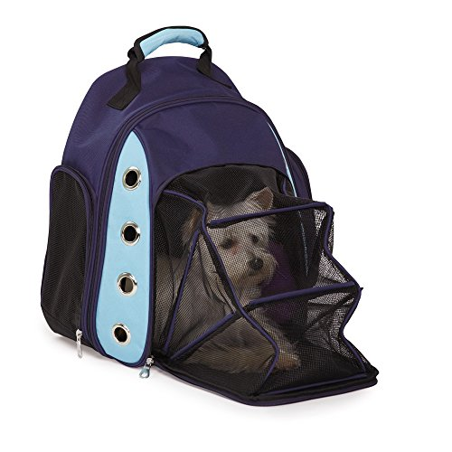 Casual Canine Ultimate Backpack Carrier, Azul, 17 inches L x 16.5 inches W x 5.3 inches H