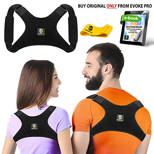 Back Posture Corrector For Women And Men   Resistance Band By Evoke Pro   Trains Your Back Muscles To Prevent Slouching And Provides Back Pain Relief    Regular