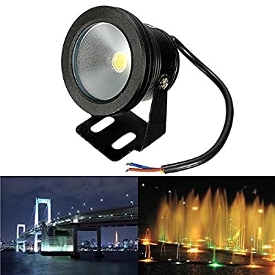 Outdoor 12V Under Water Fountain Waterproof 10W LED Flood Wash Light (Color Warm White)