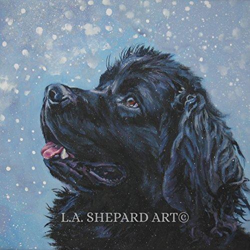 - A Newfoundland dog art portrait print of an LA Shepard painting 12x12