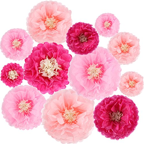 Gejoy 12 Pieces Paper Flower Tissue Paper Chrysanth Flowers DIY Crafting for Wedding Backdrop Nursery Wall Decoration (Color Set - Piece 12 Nursery