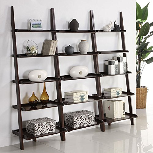 Walnut Five-tier 3-piece Leaning Ladder Shelf Set by Martin Tools