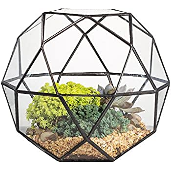 close footed gold copper brass glass geometric terrarium with door pentagon ball. Black Bedroom Furniture Sets. Home Design Ideas