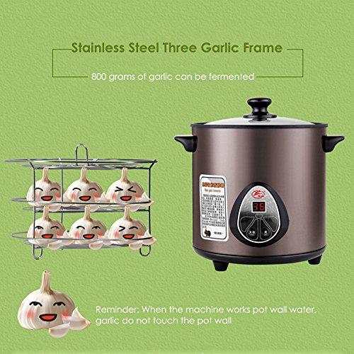 HUKOER Black Garlic Fermenter Full Automatic Intelligent Control, Single Colve Garlic Mutiple Clove Garlic DIY for home 110V by HUKOER (Image #6)