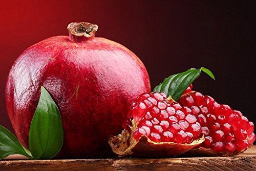 Sweet Red Fruit Pomegranate Still Life Poster Art Wall For Home Decoration Print Picture 20x30Inch