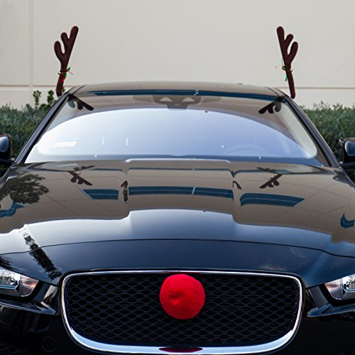 oxgord car window roof front accessories rudolf reindeer antlers easy install rooftop antler and. Black Bedroom Furniture Sets. Home Design Ideas