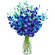 KaBloom Exotic Blue Sapphire Orchid Bouquet of 20 Fresh Blue Dendrobium Orchids from Thailand with Vase
