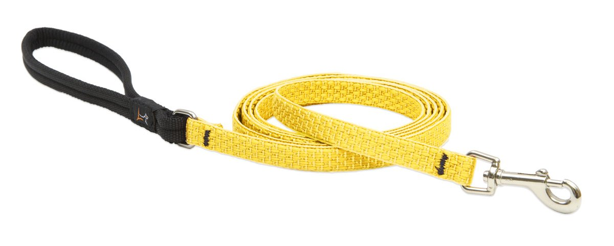 Not Applicable Lupine Eco 1 2-Inch Recycled Fiber Padded Handle Leash for 6-Feet Small Dogs, Sunshine