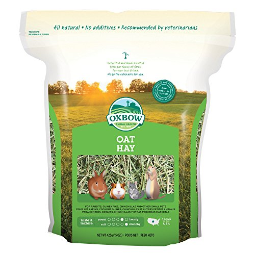 Oxbow Bene Terra OAT HAY 15 oz Bag For Small (Oat Hay)
