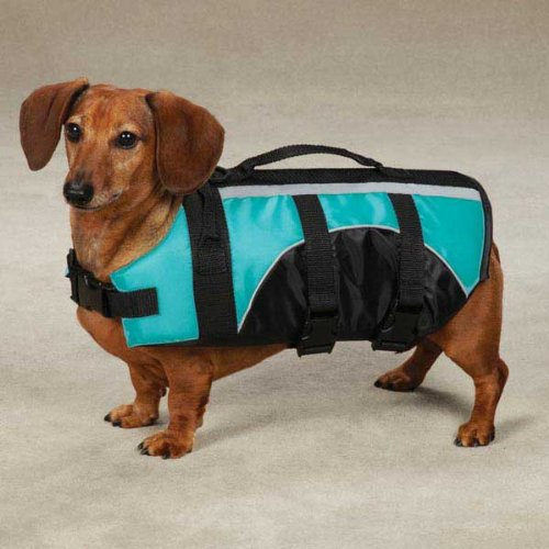 Guardian Gear Brite Bluebird Aquatic Dog Life Jacket Preserver
