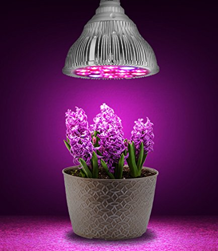 Hoont8482; LED Grow Light - Indoor Plant, Flowers and Herb Light; For Indoor Growing and Hydroponics - (Fits Standard Socket, E27, 15W, Long Lasting 50,000 hours, Low Energy Consumption, Low Heat) (Best Fluorescent Bulbs For Growing Weed)