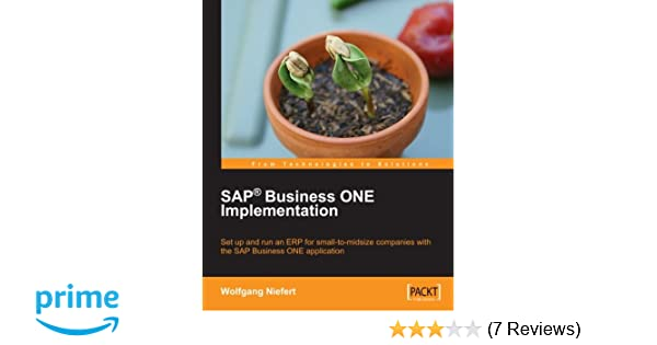 sap business one implementation lite niefert wolfgang